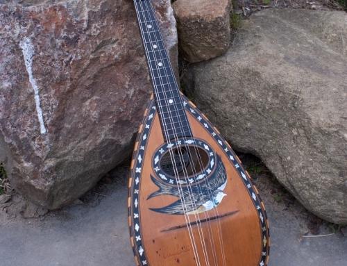 Claudio Cavelli mandoline